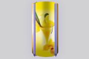 Солярий вертикальный PRO Line (L3) 220В,  аква, арома